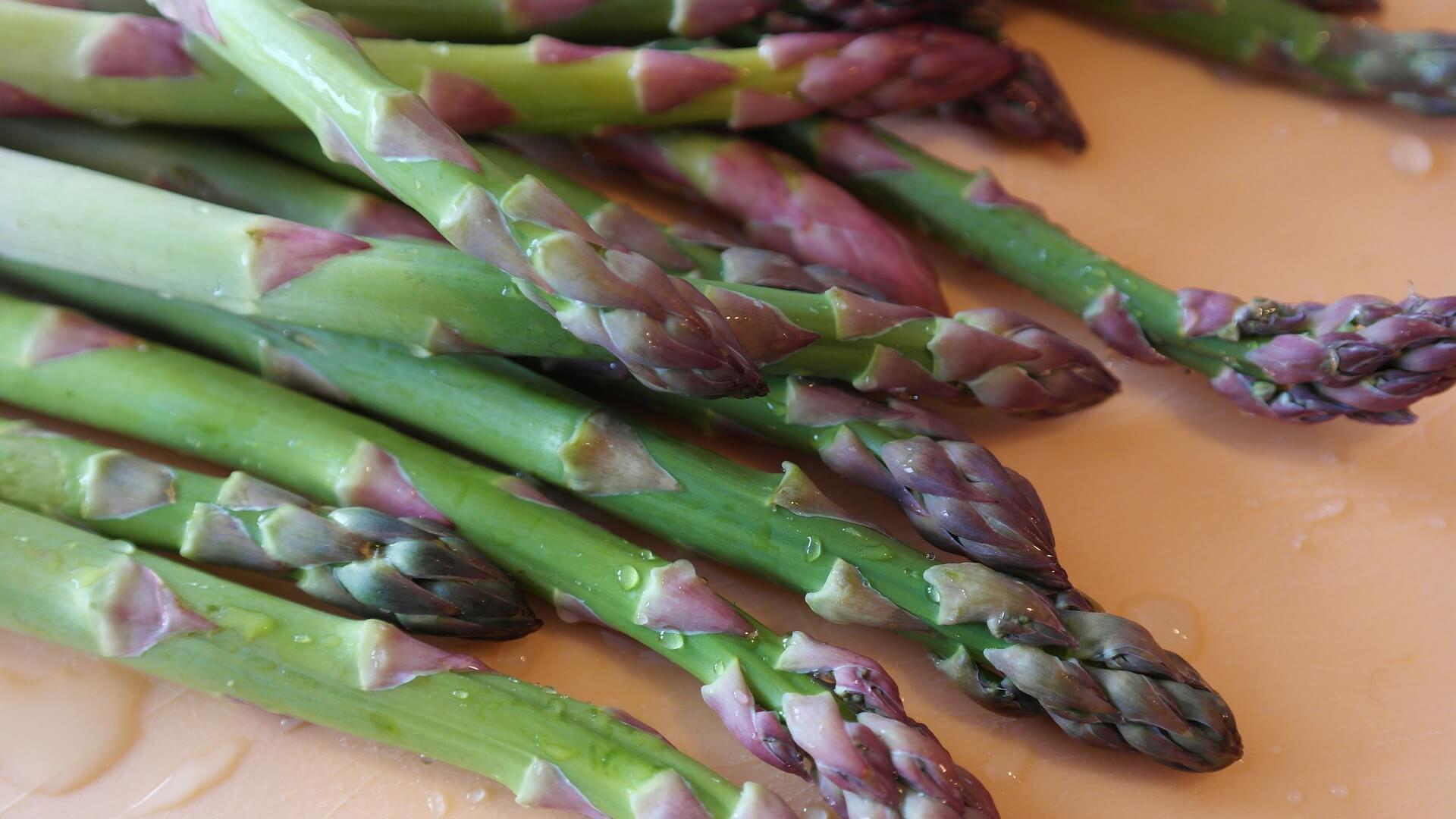 Champignons Low Carb Gemüsesorten