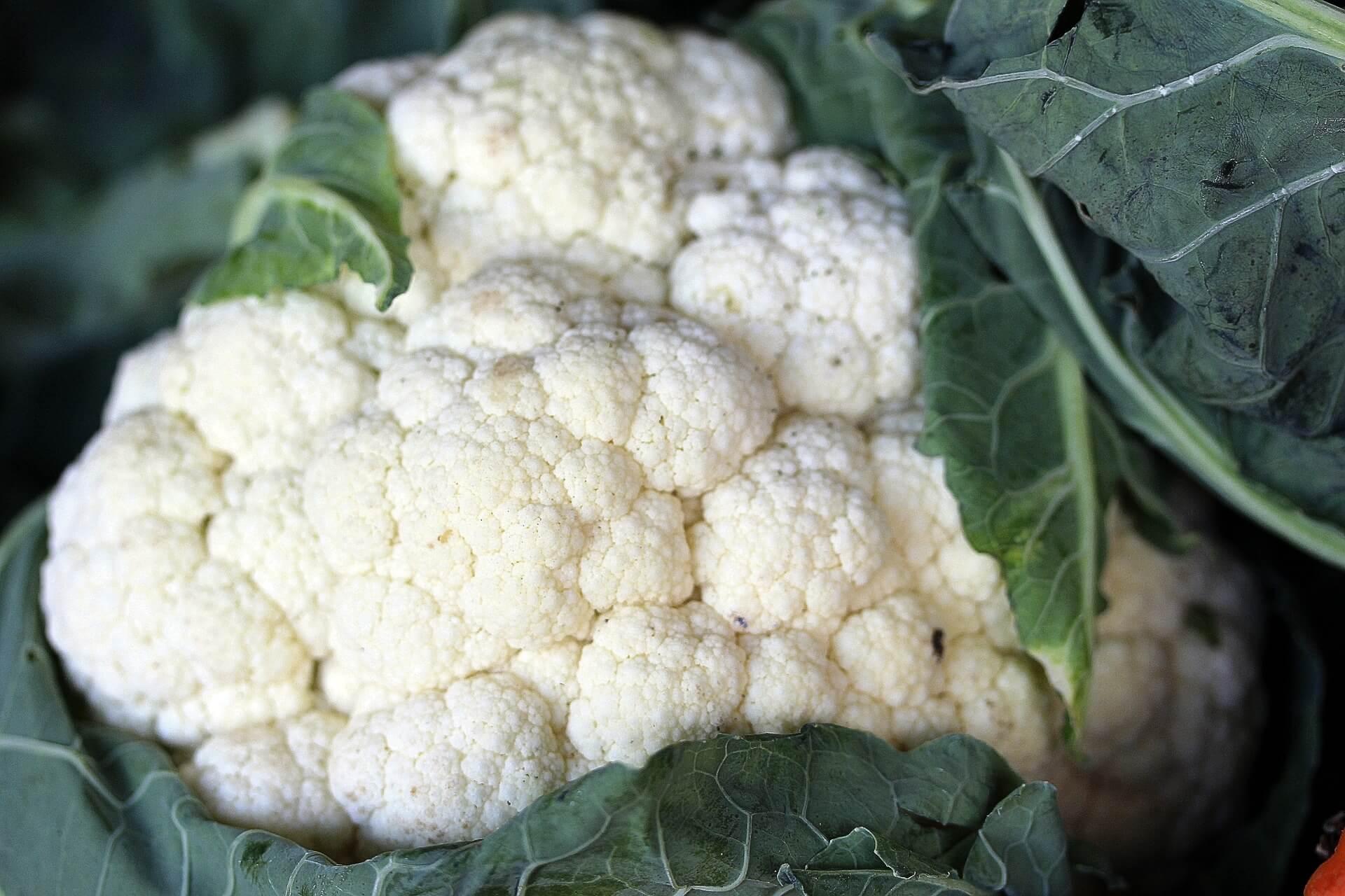Blumenkohl Gemüse mit wenig Kohlenhydraten