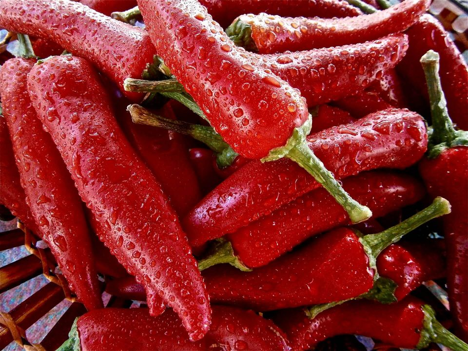 Paprika Low Carb Gemüse