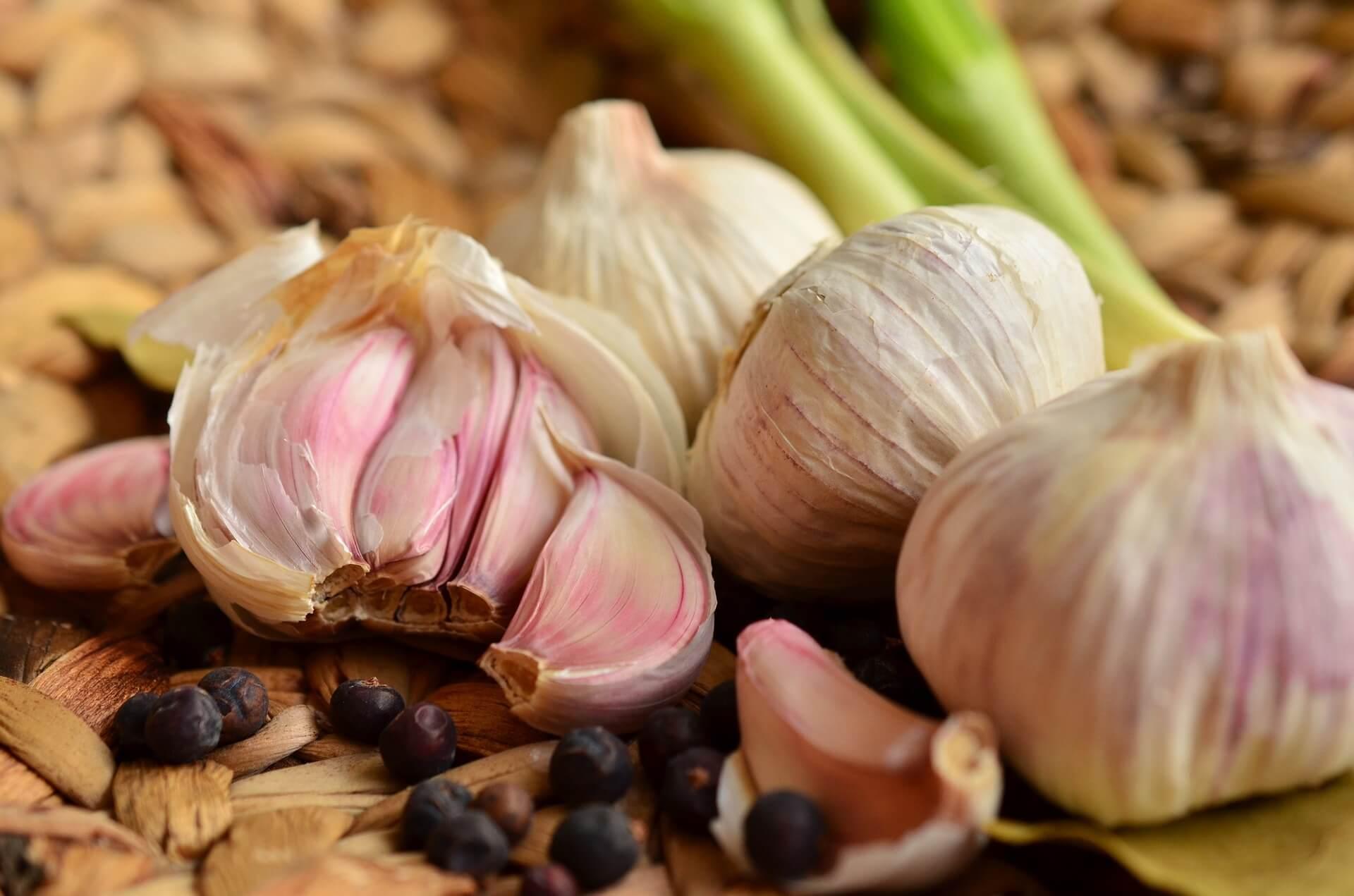 Knoblauch Low Carb Gemüsesorten