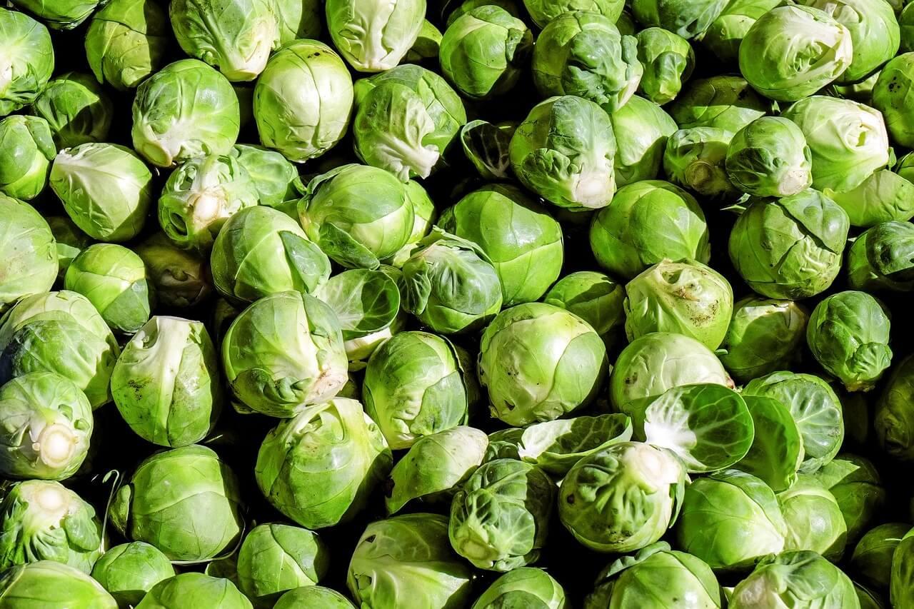 Low Carb Gemüse Rosenkohl Kohlsprossen
