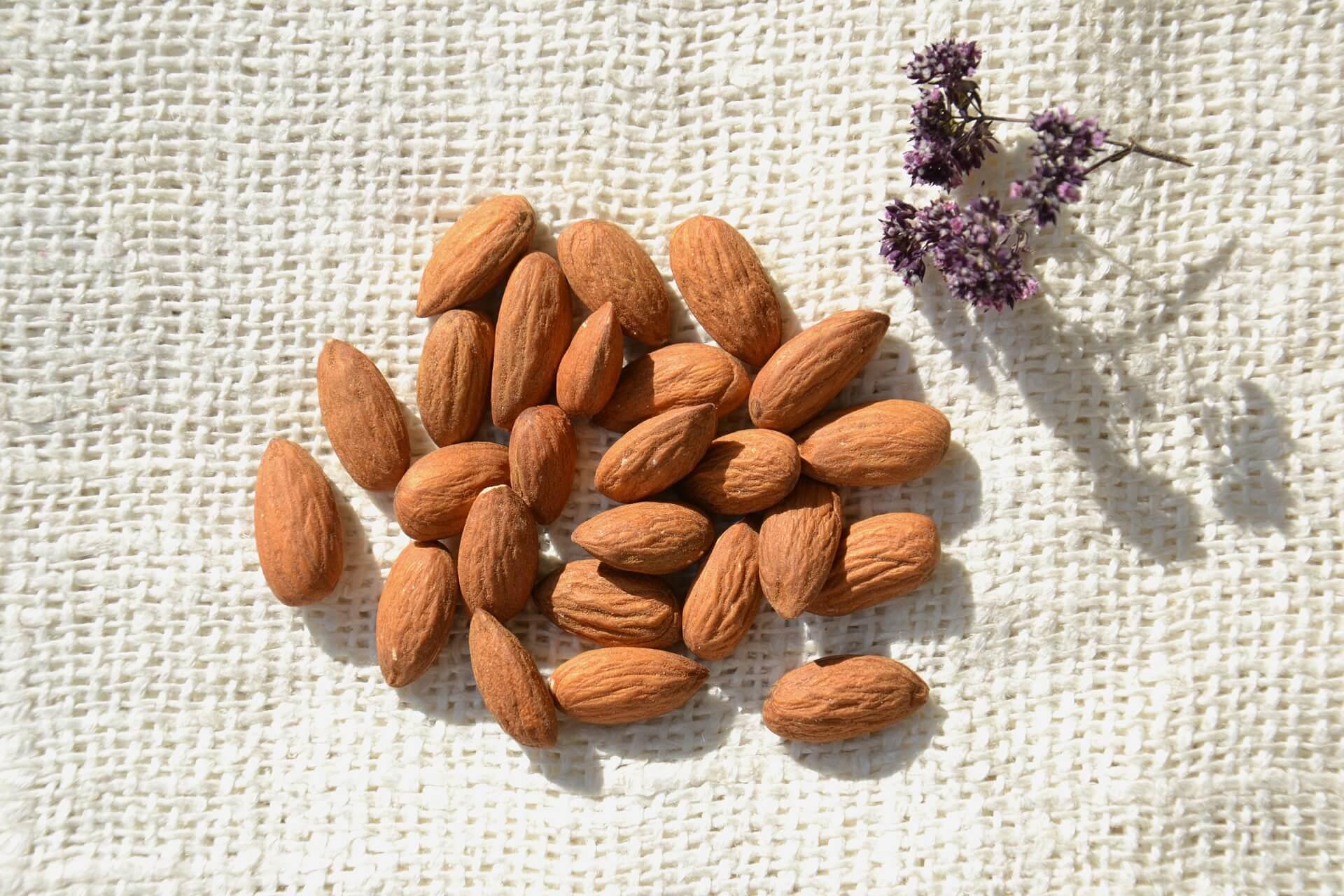 Abnehmen mit Nüssen - Mandeln, Macadamia, Walnüsse und Co.