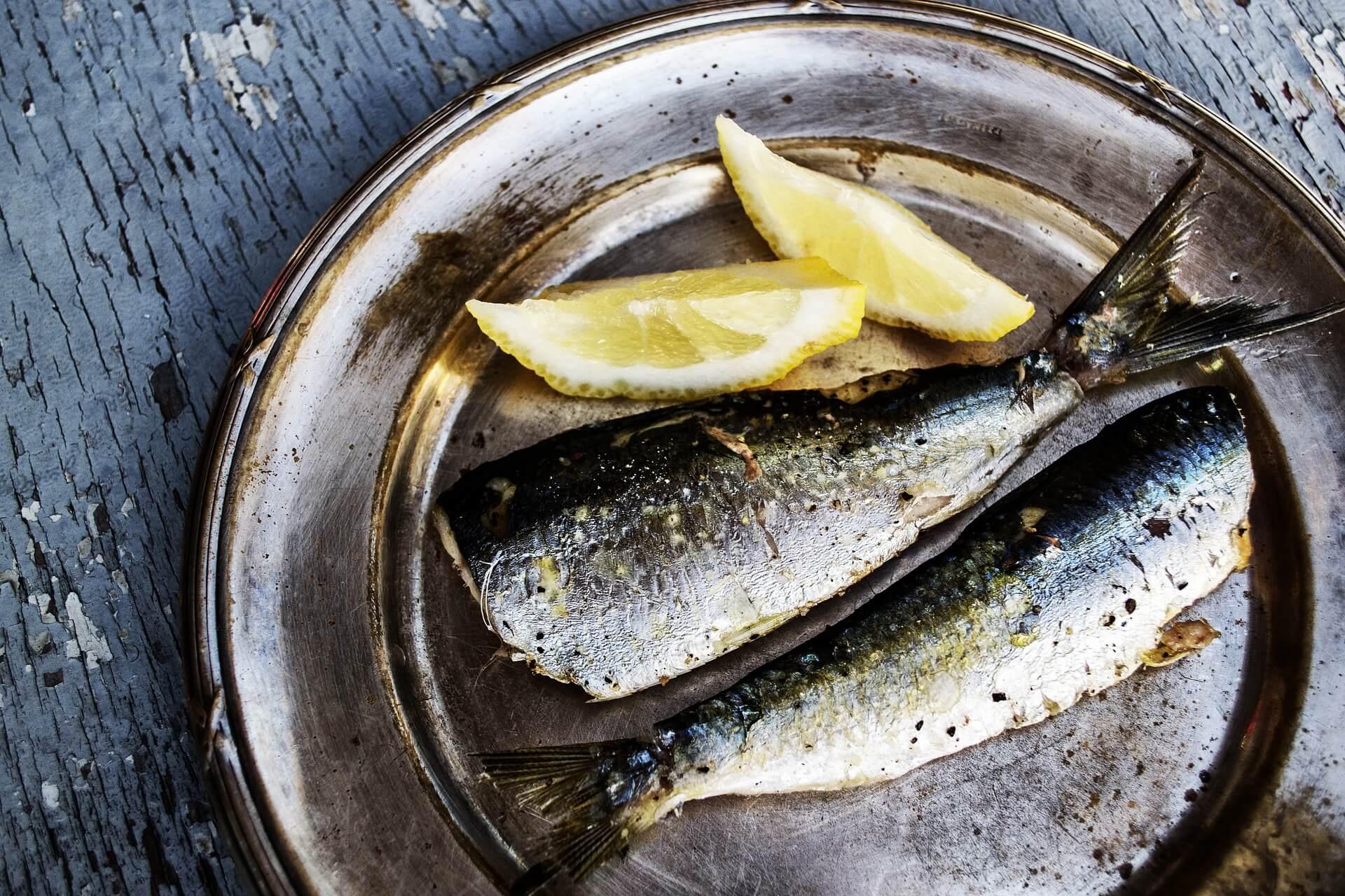 Fisch fettreich und ohne Kohlenhydrate