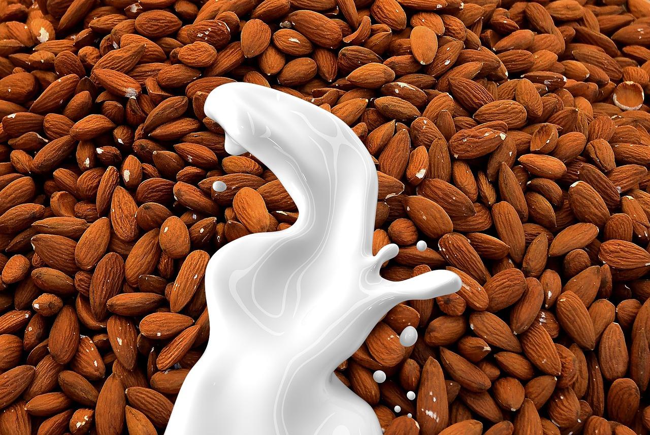 Mandelmilch ist die beste Alternative zu Milch. Denn Mandeln sind ernährungsphysiologisch definitiv wertvoll!