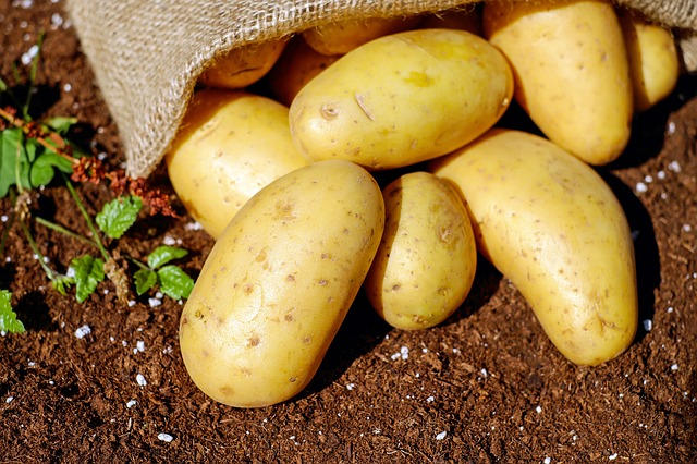 Kartoffeln sind die besten Kohlenhydrate zum Abnehmen