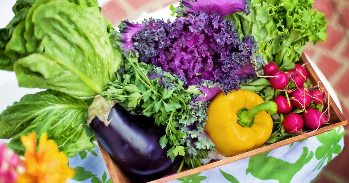 Kalorienarme Lebensmittel zum Abnehmen